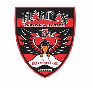 Fla-Minas 2015 1,jpg
