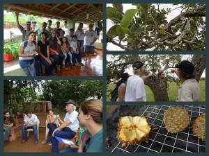 Seminário Agroecologia Capacitação Projeto Marolo 4