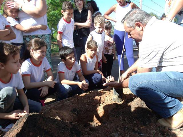 Dia Árvore Plantio de Árvore 2 (Copy)