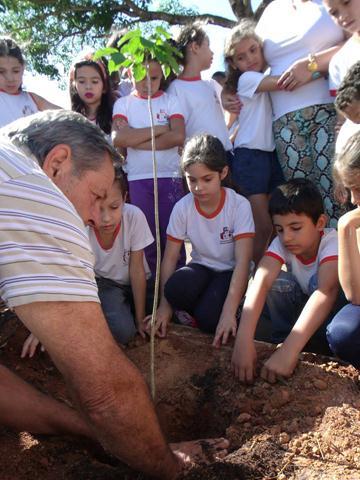 Dia Árvore Plantio de Árvore 5 (Copy)