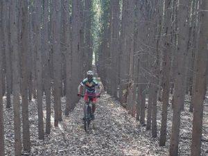 Ciclista pedalando em trilha